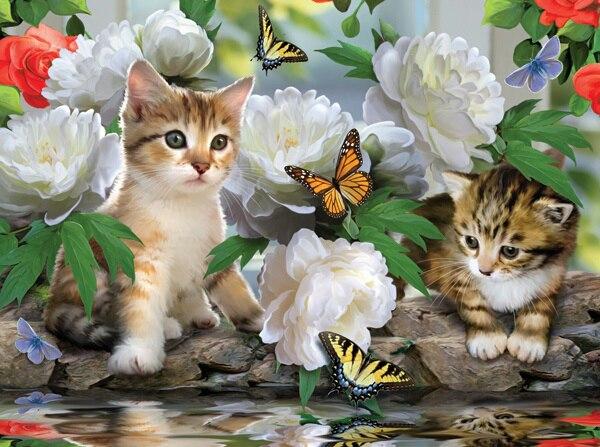 gattini con farfalle