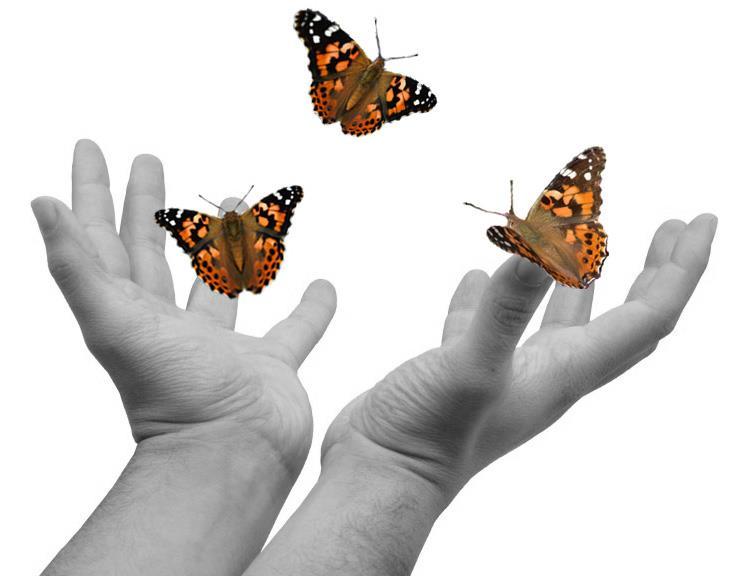 farfalle e manine