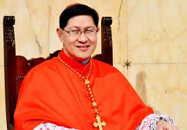 Talge cardinale